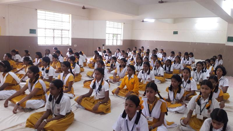MVM Raigarh School Education